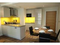 1 bedroom flat Brixton - SW2