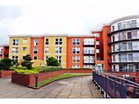 Modern one bedroom flat in Newbury Park - Ilfrod