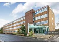 1 bedroom flat in Wella Road, Basingstoke, RG22 (1 bed)