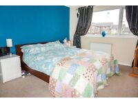 Friendly double bedroom for rent in 4 bedroom share house in Rodley