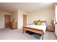 Extremely light 2 bedroom first floor flat in Seven Kings part dss acceptable with guarantor