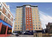 Amazing spacious one bedroom fifth floor flat in Ilford, IG1