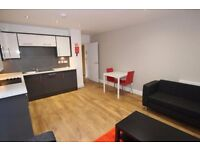Brand New Modern 1 Bed Flat to Rent