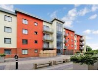 Stunning spacious one bedroom first floor apartment in Barking, IG11