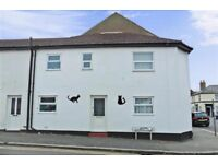 Very large superb 1 bedroom house close to town and seafront. Plenty of free unallocated parking