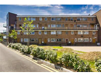 Stunning 3 bed, 1 bath Maisonette in Mile End, E3