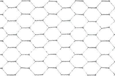 Hexagonal Wire Mesh Basic 6eck Galvanised 75/1.0/1000 50m Fence Wire Mesh Fence