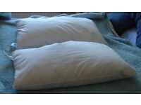 2 Bedroom Image Curled Feather Pillows Clean