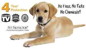 Pet Protector Disc