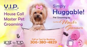 Grooming find or advertise pet animal services in saskatchewan house call master dog grooming for that huggable feeling solutioingenieria Images