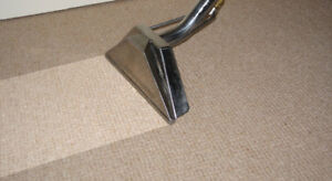 PROFESSIONAL CARPET CLEANING (VERY CHEAP PRICE)