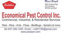 Economical Pest Control 647-380-1205
