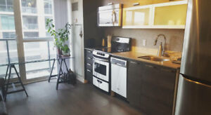 Stunning 2 Bedroom 2 Bathroom, Fully Furnished Unit QUEEN WEST