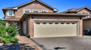 2 Bedrooms basement apartment with separate entrance available.