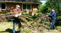 Yard Cleaning•Yard Maintenance•Eaves Trough Cleaning
