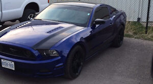 2014 Ford Mustang GT Coupe (2 door)