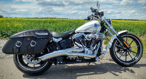 Harley bags and backrest and quick release