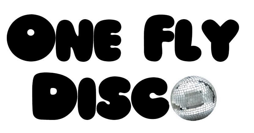 One Fly Disco