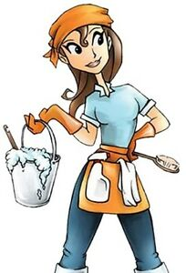 Cleaning Lady Available !