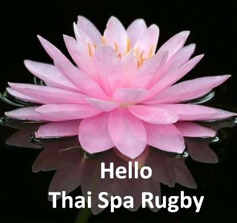 SuNinYa Thai Spa - Massage and Therapy. Book