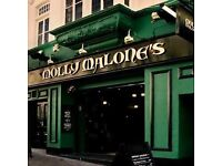 Assistant Manager/Supervisor and Part Time bar staff required at Molly Malone's