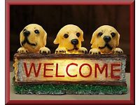 Light Up Welcome Puppy
