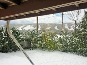 Available Christmas - 3 Bed Blue Mountain Cottage Fantastic View