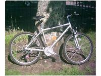 raleigh tundra mountain bike!!!