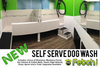 NEW Self Serve Dog Wash at Fetch Haus!