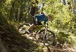 Mountain Bike Mark