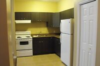 Centrally Located Spacious 1 Bedroom and Den