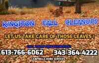 Eavestrough Cleanout * Leaf Removal * Snow Clearing