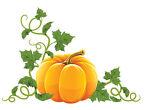 Bizzies Pumpkin Patch