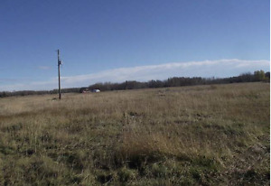 serviced 25 acre lot for sale 10 min west of thorsby
