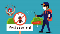 Amazing value Pest Control! Contact us now! Wow!