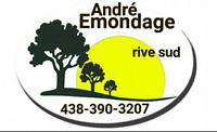 SERVICE D'ARBRES ÉMONDAGE,ÉLAGAGE,ÉMONDEUR,TAILLE DE HAIE