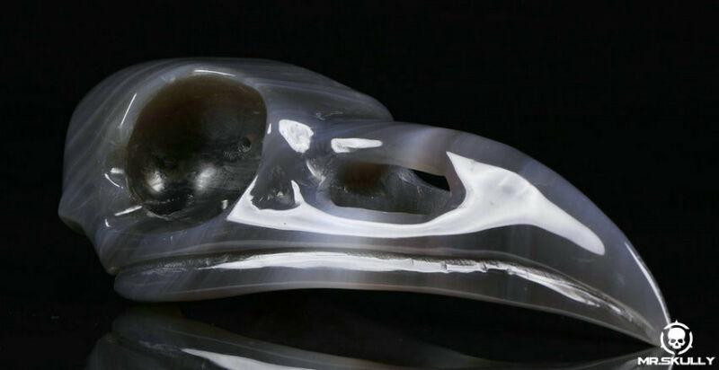 "Huge 5.0"" Agate Carved Crystal Raven Skull, Realistic, Crystal Healing"