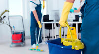 Cleaning Service- EXPERIENCED LADY