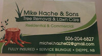 Estimate for Tree removal and Lawn care
