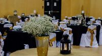 Chair Covers for Rent *Wedding* Book before Jan 1 & rcv 25% off