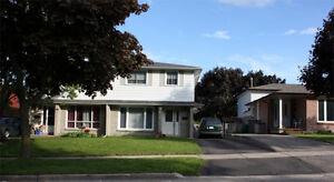 Semi detached home for rent in Kitchener Kitchener / Waterloo Kitchener Area image 4