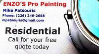 Enzos Pro Painting