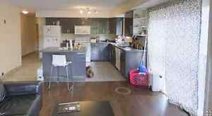 Subletting 1 bedroom at Domus 72 Marshall (available now) Kitchener / Waterloo Kitchener Area image 6