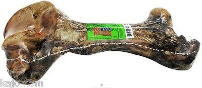 Mammoth Natural Bones ((1) RED BARN NATURAL MAMMOTH BONES *USA* 14-16 INCHES Dog Chews Treats FRESH ham )