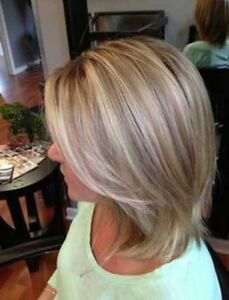 $50 ONLY 1/2 head Foil Hair Model Mona Vale Pittwater Area Preview