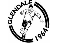 Local Saturday football club looking for players to join in time for new season
