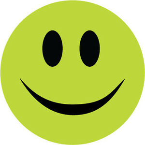 smiley face sticker lime green novelty humorous vinyl