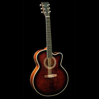 Perfect Christmas gift....Tanglewood Acoustic Electric TW55