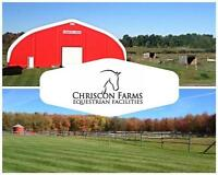 Now offering Outdoor Boarding / Riding Lessons / Equine Services
