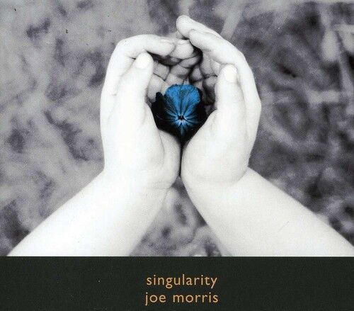 Joe Morris - Singularity [New CD]